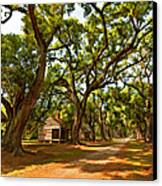 Southern Lane Paint Filter Canvas Print by Steve Harrington