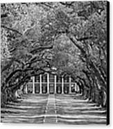 Southern Time Travel Bw Canvas Print by Steve Harrington