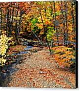 Spectrum Of Color Canvas Print by Frozen in Time Fine Art Photography