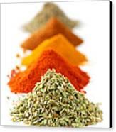 Spices Canvas Print by Elena Elisseeva