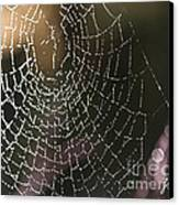 Spiderweb Green Canvas Print by Artist and Photographer Laura Wrede