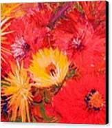 Splashy Floral II Canvas Print by Anne-Elizabeth Whiteway