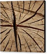 Split Wood Canvas Print by Art Block Collections