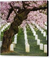 Spring Arives At Arlington National Cemetery Canvas Print by Susan Candelario
