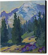 Spring At Mount Rainier Canvas Print by Diane McClary