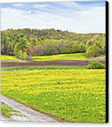 Spring Farm Landscape With Dirt Road And Dandelions Maine Canvas Print by Keith Webber Jr