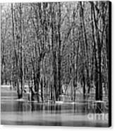 Spring Flooding Canvas Print by Sophie Vigneault