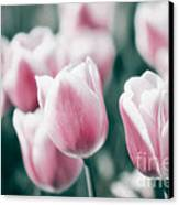 Spring In Love Canvas Print by Angela Doelling AD DESIGN Photo and PhotoArt
