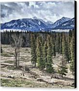 Spring In The Wallowas Canvas Print by Adele Buttolph