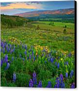 Spring Storm Passing Canvas Print by Mike  Dawson