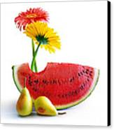 Spring Watermelon Canvas Print by Carlos Caetano