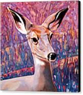 Springtime Colors Canvas Print by Bob Coonts