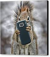 Squirrel With Cellphone Canvas Print by Mike Agliolo