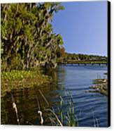 St Johns River Florida Canvas Print by Christine Till