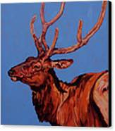 Stag Canvas Print by Patricia A Griffin