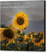 Stand Out Canvas Print by Bill Wakeley