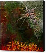 Star Burst Canvas Print by Christopher Gaston