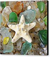 Starfish Fine Art Photography Seaglass Coastal Beach Canvas Print by Baslee Troutman