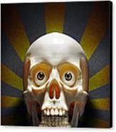Staring Skull Canvas Print by Carlos Caetano