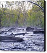 Stepping Stones Canvas Print by Bill Cannon