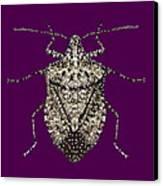 Stink Bug Bedazzled Canvas Print by R  Allen Swezey