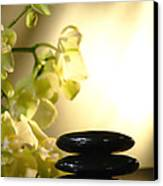 Stone Cairn And Orchids Canvas Print by Olivier Le Queinec