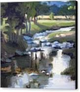 Stony Creek Canvas Print by Erin Rickelton