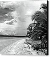 Storm Cloud On The Horizon Canvas Print by John Rizzuto