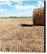 Straw Bales At A Stubbel Field Canvas Print by Svetoslav Radkov