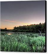 Streaky Swamp Sunrise Canvas Print by Deborah Smolinske