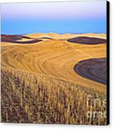 Stubble Canvas Print by Don Hall