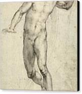 Study For The Last Judgement  Canvas Print by Michelangelo  Buonarroti