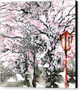 Sumie No.3 Cherry Blossoms Canvas Print by Sumiyo Toribe