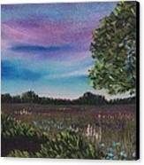 Summer Meadow Canvas Print by Anastasiya Malakhova