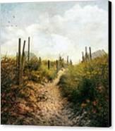 Summer Pathway Canvas Print by John Rivera