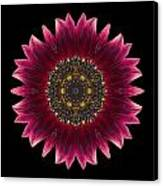Sunflower Moulin Rouge I Flower Mandala Canvas Print by David J Bookbinder