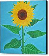 Sunflower Canvas Print by Sven Fischer