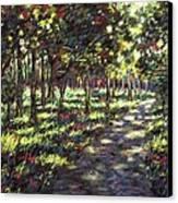 Sunlit Trees Canvas Print by John  Nolan
