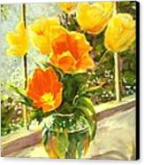 Sunlit Tulips Canvas Print by Madeleine Holzberg