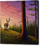 Sunrise Buck Canvas Print by C Steele