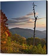 Sunrise In Shenandoah National Park Canvas Print by Pierre Leclerc Photography