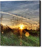 Sunrise Through Grass Canvas Print by Tim Buisman