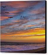 Sunset Flight Canvas Print by Robert Jensen