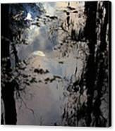 Sunshadow Canvas Print by Rdr Creative
