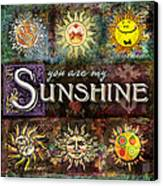Sunshine Canvas Print by Evie Cook