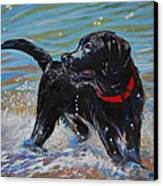 Surf Pup Canvas Print by Molly Poole