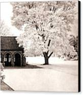Surreal Dreamy Ethereal Winter White Sepia Infrared Nature Tree Landscape Canvas Print by Kathy Fornal