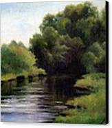 Swan Creek Canvas Print by Janet King