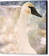 Swan Journey Canvas Print by Kathy Bassett