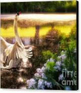 Swan Lake Canvas Print by Lois Bryan